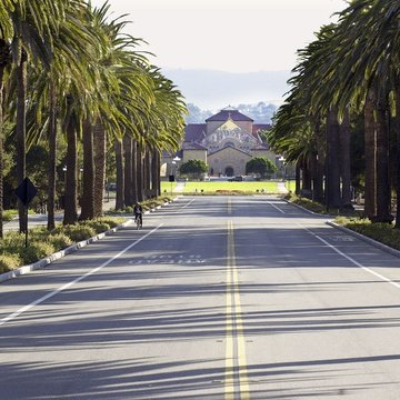 Palm Drive leading to Stanford Memorial Church